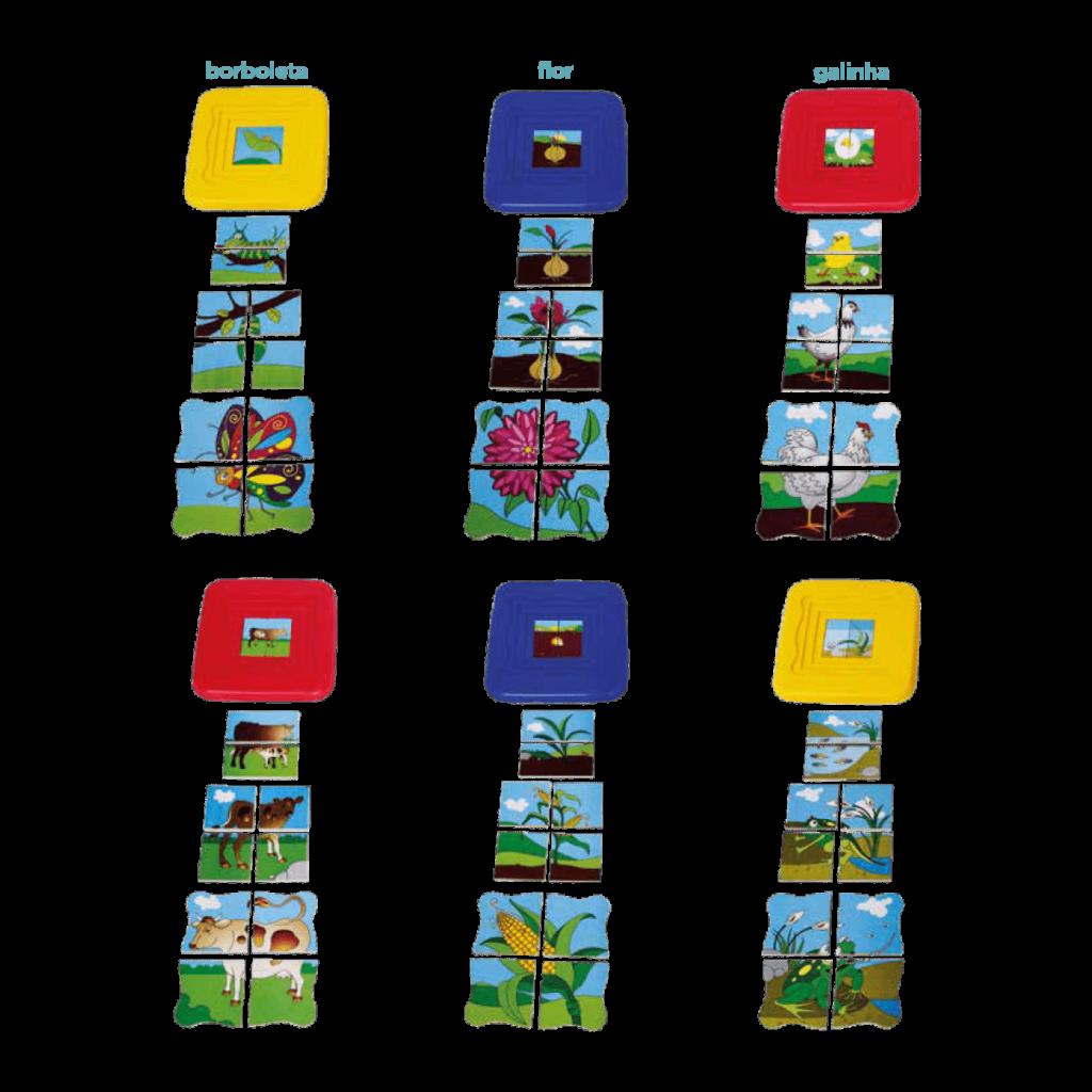 Conjunto quebra-cabeças ciclo de vida